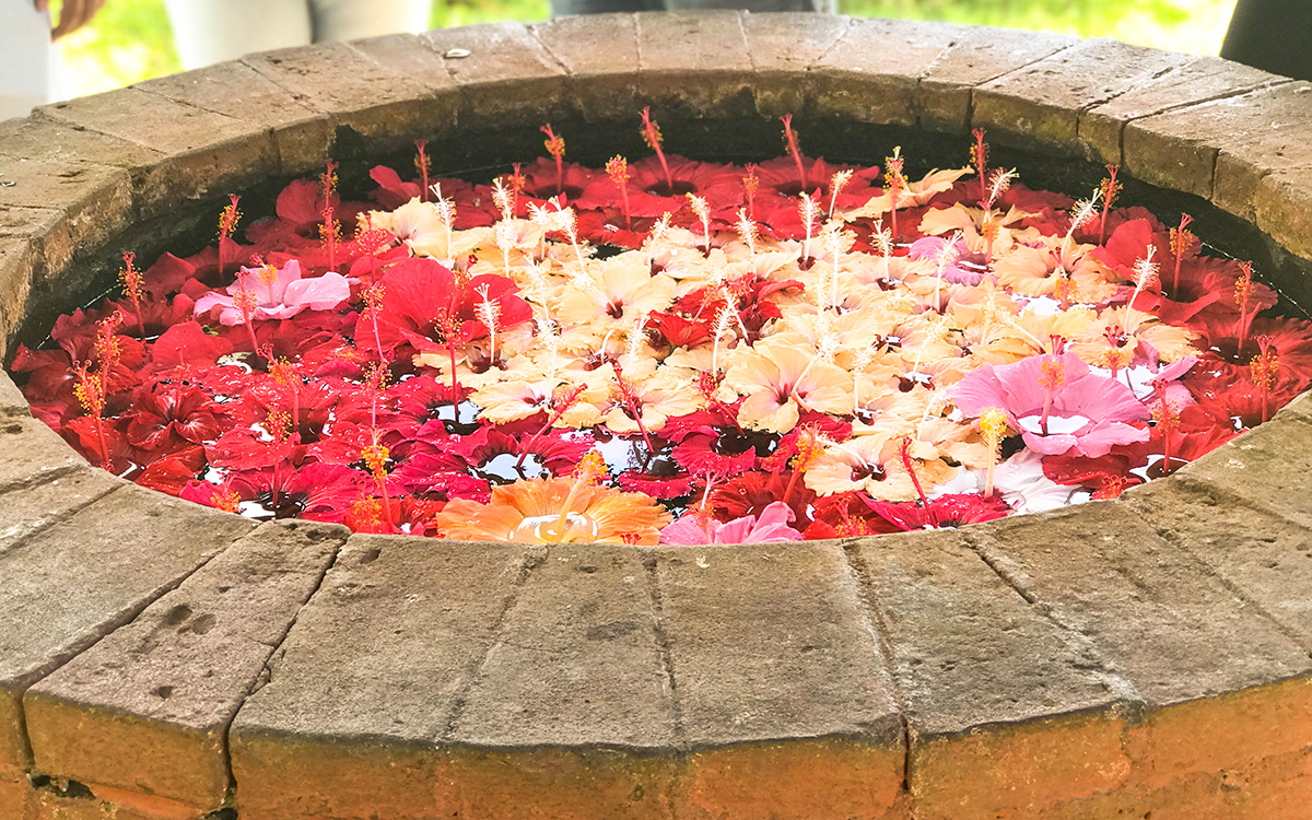 Flower Well of Eden Nature Park and Resort Davao